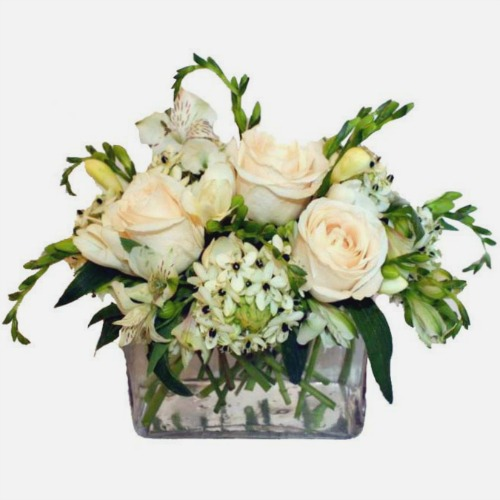 foxgloves flowers victoria bc florist sympathy, elegant classics 