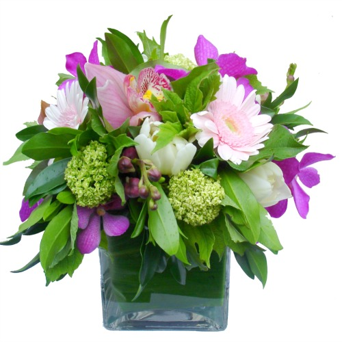 foxgloves flowers victoria bc florist Traditional Posies Elegant Classics pink purple 
