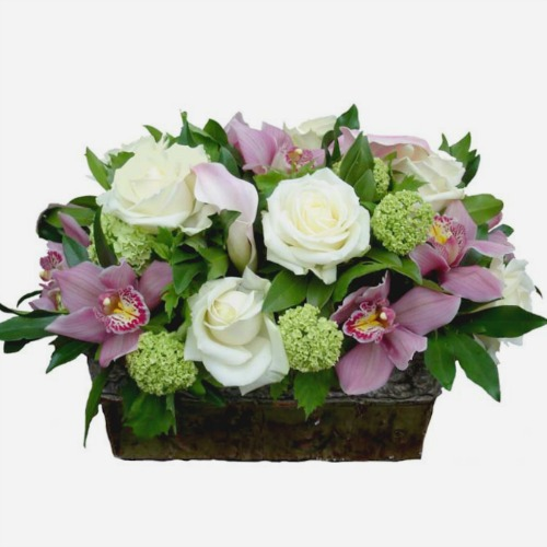 foxgloves flowers victoria bc florist Fresh Compacts, Tasteful Tropicals, Romantic Roses, Elegant Classics pink, white, birthday, anniversary, mother 