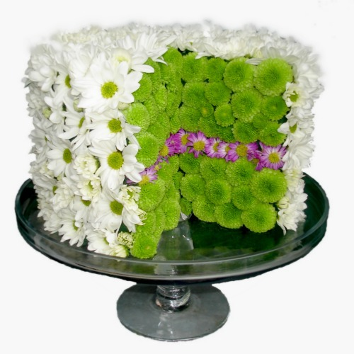 foxgloves flowers victoria bc florist Traditional Posies Fresh Compacts green white