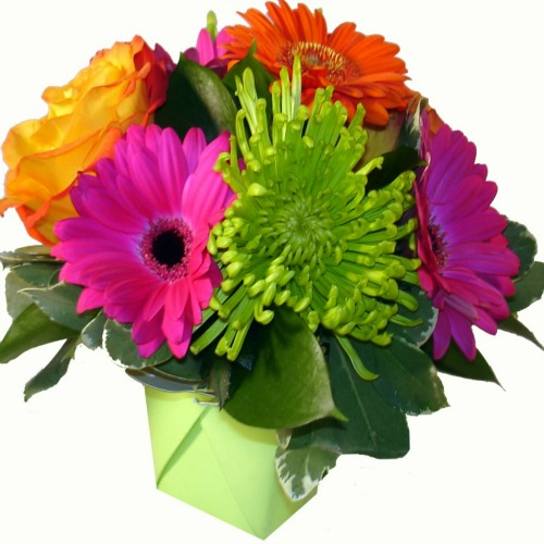 foxgloves flowers victoria bc florist fresh compacts