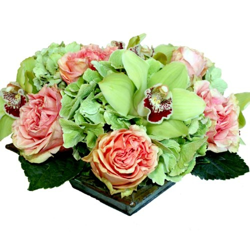 foxgloves flowers victoria bc florist fresh compacts, european garden
