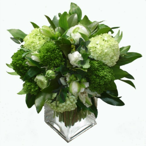 foxgloves flowers victoria bc florist Elegant Classics green winter summer sympathy mother