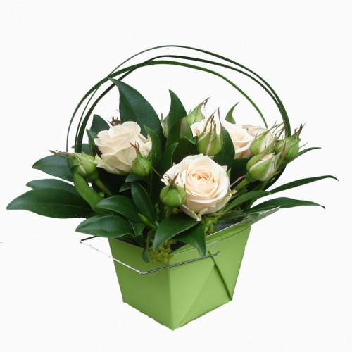 foxgloves flowers victoria bc florist Romantic Roses, Fresh Compacts	green, pink baby