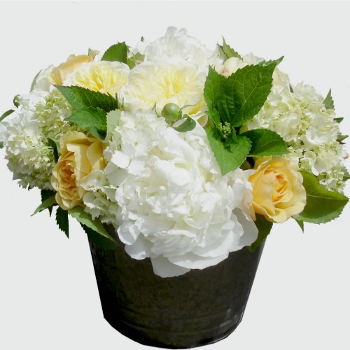 foxgloves flowers victoria bc florist Fresh Compacts Elegant Classics yellow white spring anniversary sympathy mother
