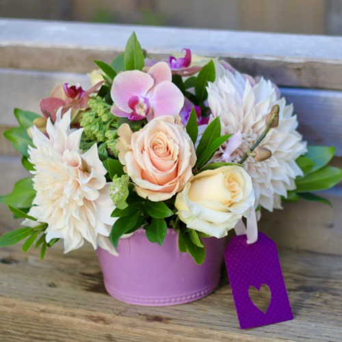 foxgloves flowers victoria bc florist congratulations
