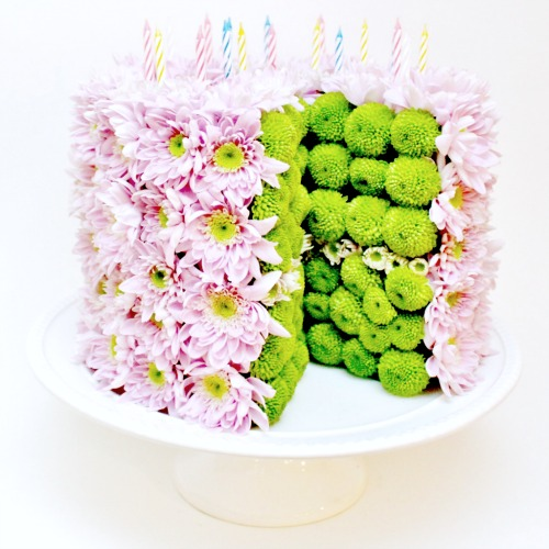 foxgloves flowers victoria bc florist compacts