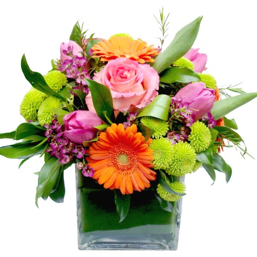 foxgloves flowers victoria bc florist Fresh Compacts	orange pink green summer birthday