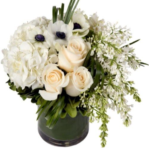 foxgloves flowers victoria bc florist sympathy