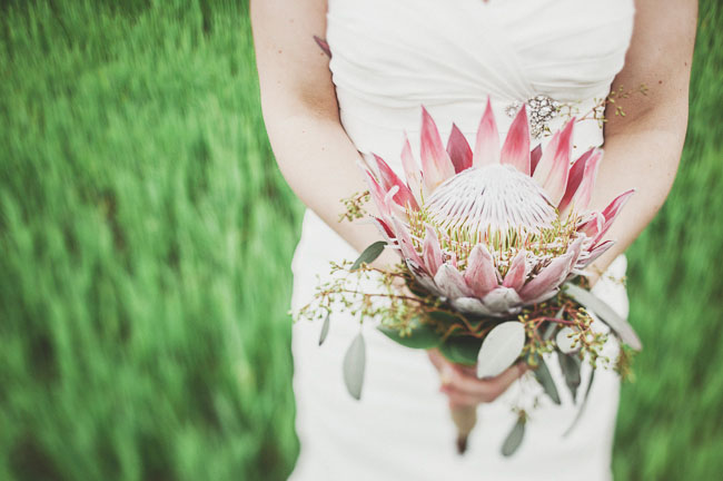 bridal bouquet, king protea