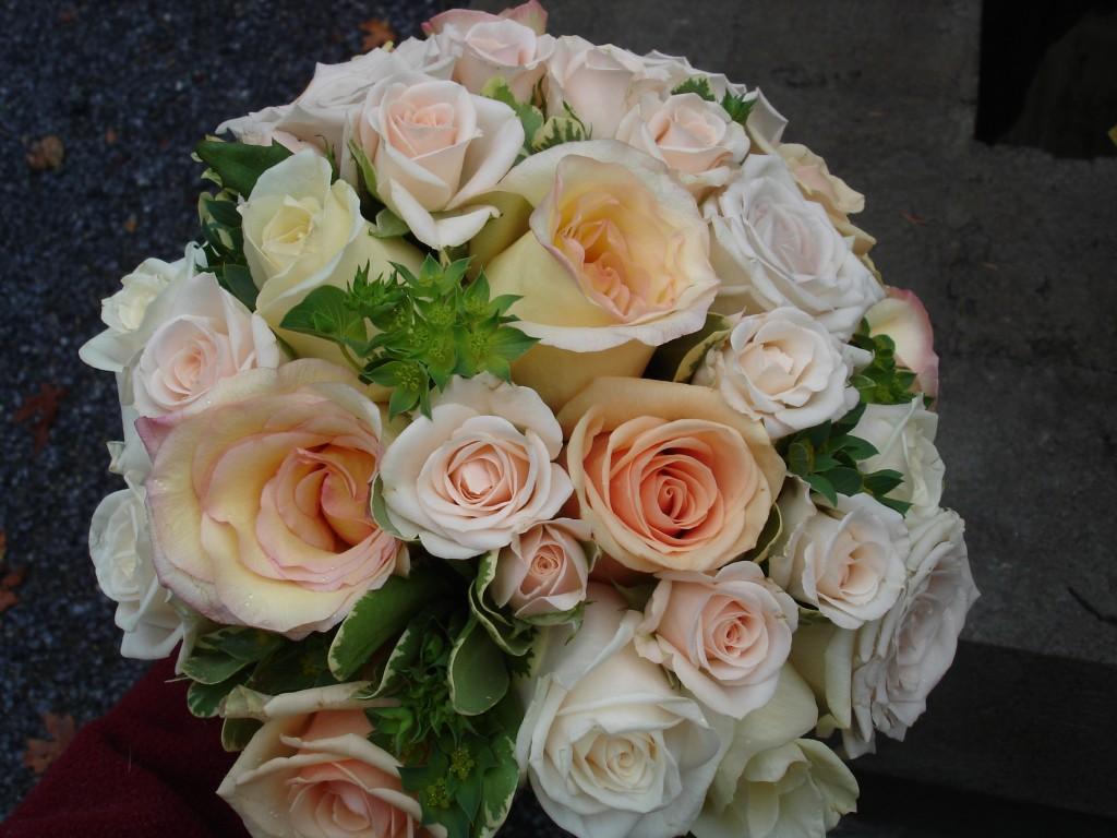 Roses and Buplerum