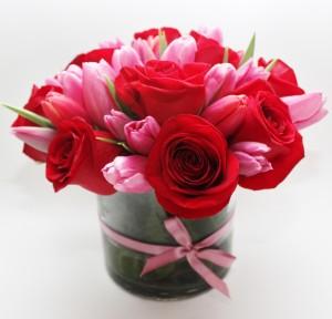 Adore- Foxgloves Flowers
