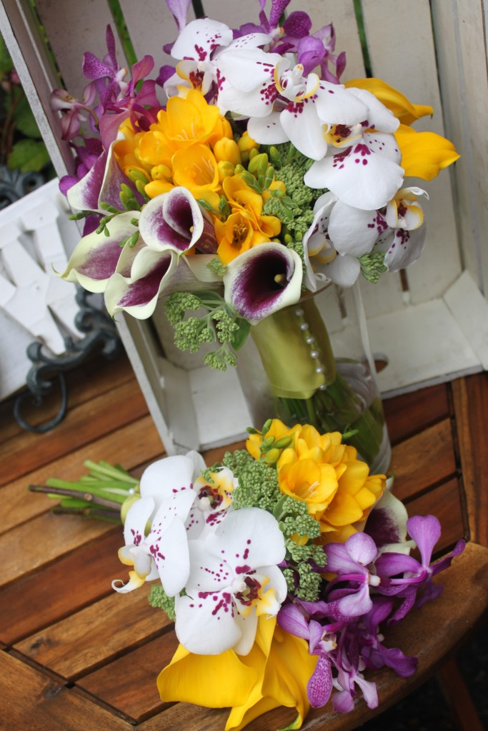 Punchy Orchids
