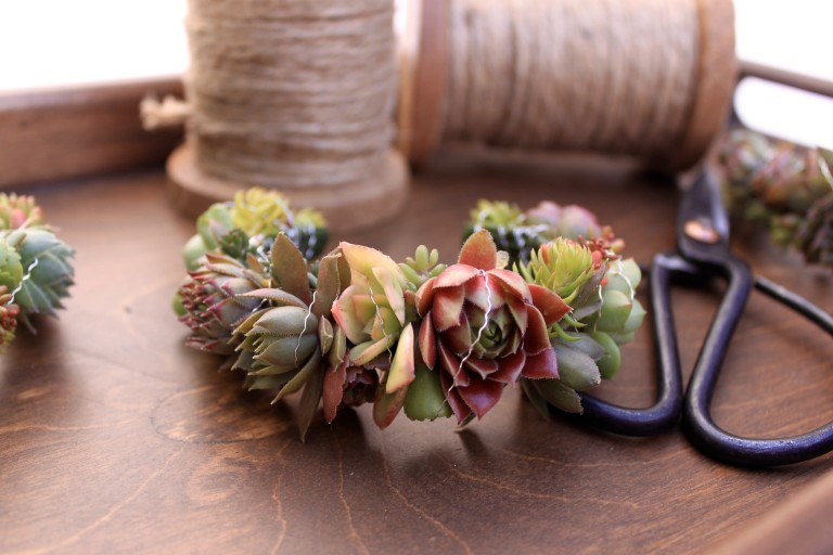 Succulent wearable art by Foxgloves Flowers