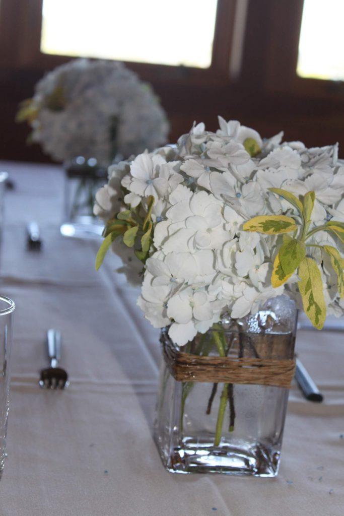 Herbs and Hydrangea