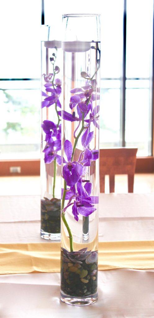 Beachside Orchids